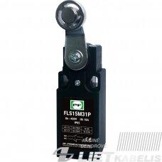 Galinis jungiklis FLS 15 M31P IP65 PF