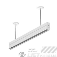 Liuminescencinis šviestuvas mokyklos lentai 1x36W (K013AC0051)