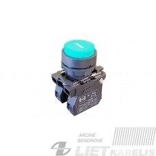Mygtukinis jungiklis  FP PCPB pl 1NO žalias PF