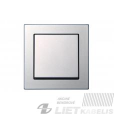 Perjungiklis 1 klavišo, IP6 10-201-01 PROF metalo sp., (spyruokliniai pajungimo kontaktai) Epsilon