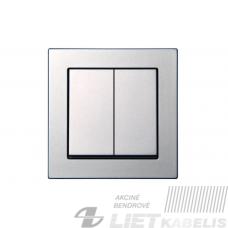 Perjungiklis 2 klavišų, IP6+6 10-201-01 PROF, metalo sp., spyruokliniai pajungimo kontaktai) Epsilon