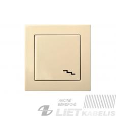 Perjungiklis, IP6 10-001-01 be rėmelio, smėlio sp., Alfa