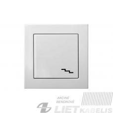Perjungiklis IP6 10-201-01 be rėmelio, spiruoklinis kontaktas, antracito sp., Epsilon